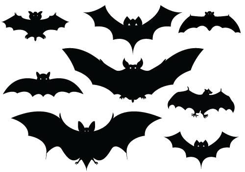 Halloween Bat PNG Picture - Bat HD PNG