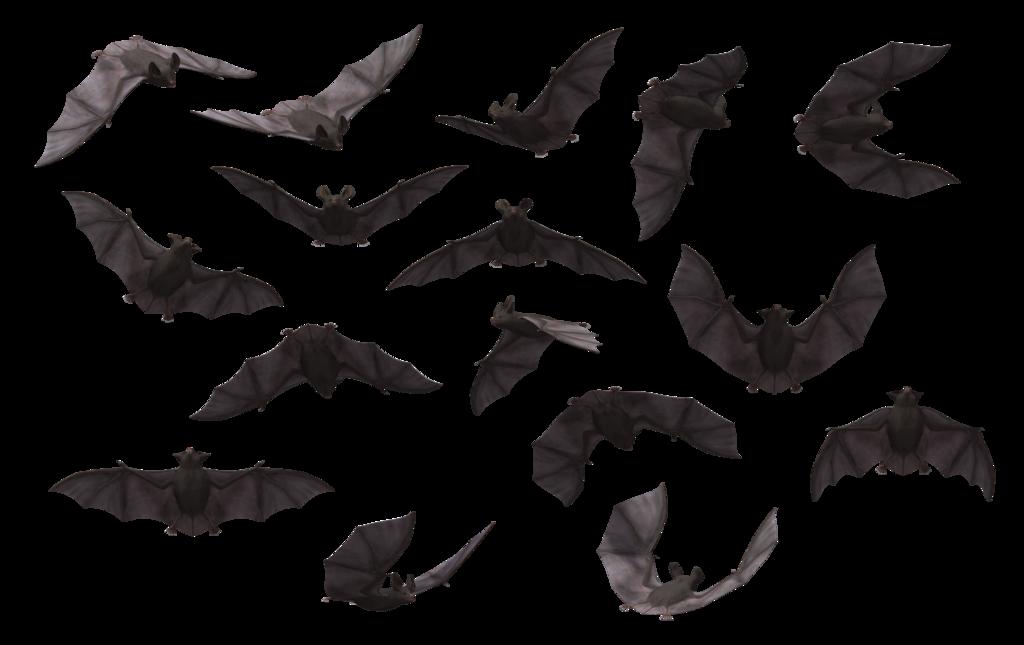 Bat PNG - 10204