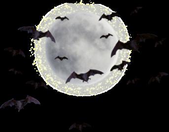 bat-054.png - Bat PNG