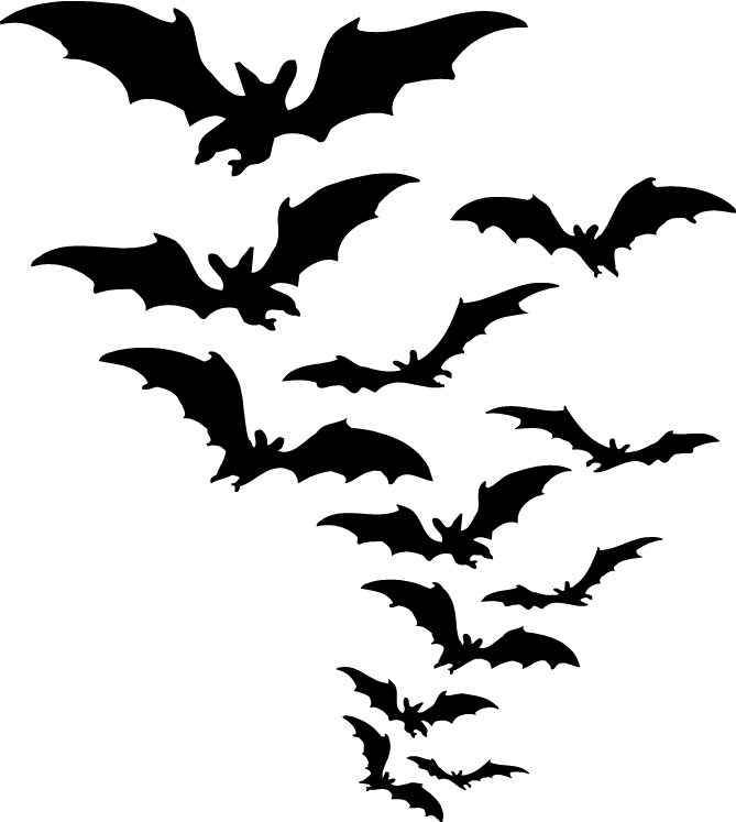 Bat PNG - 10205
