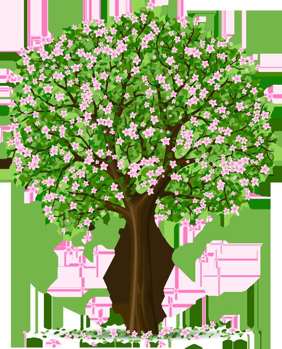 Baum, Sommer, Natur, Landscha