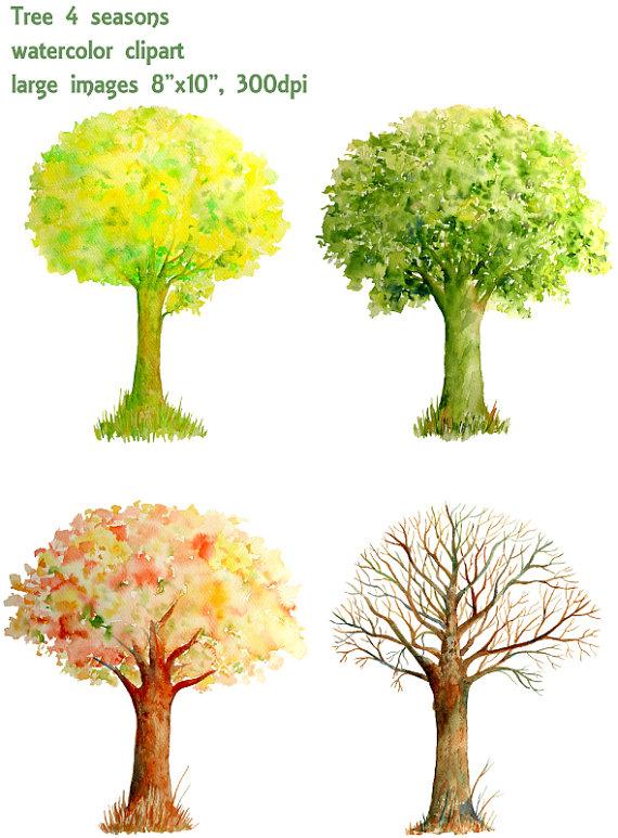 Baum Vier Jahreszeiten PNG - 163257