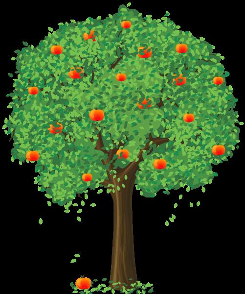 Baum Vier Jahreszeiten PNG - 163266