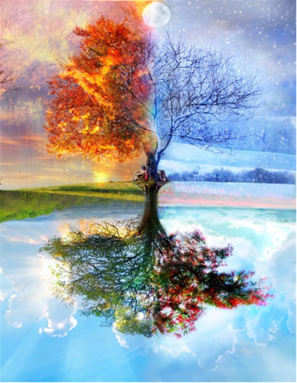 vier jahreszeiten - Baum Vier Jahreszeiten PNG