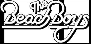 Beach Boy PNG - 166511