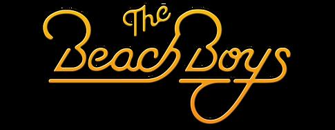 Magicians - Beach Boy PNG