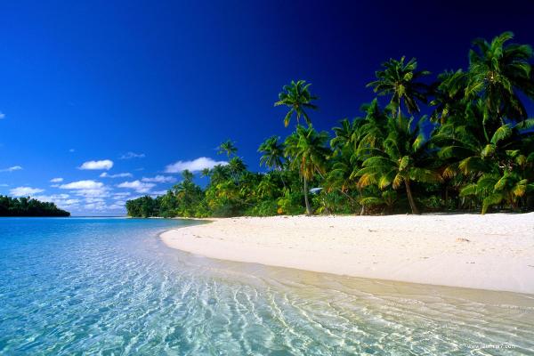 Tropics Beach Background Wallpaper Download - Beach PNG