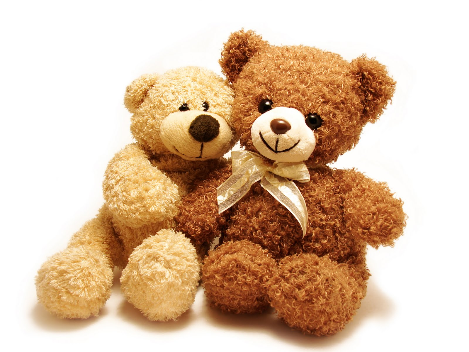sweet teddy couple love hd ph