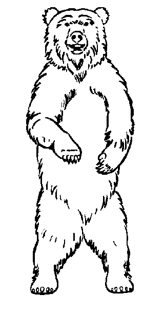 Teddy bear clipart free clipart images 3 - Bear Face PNG HD