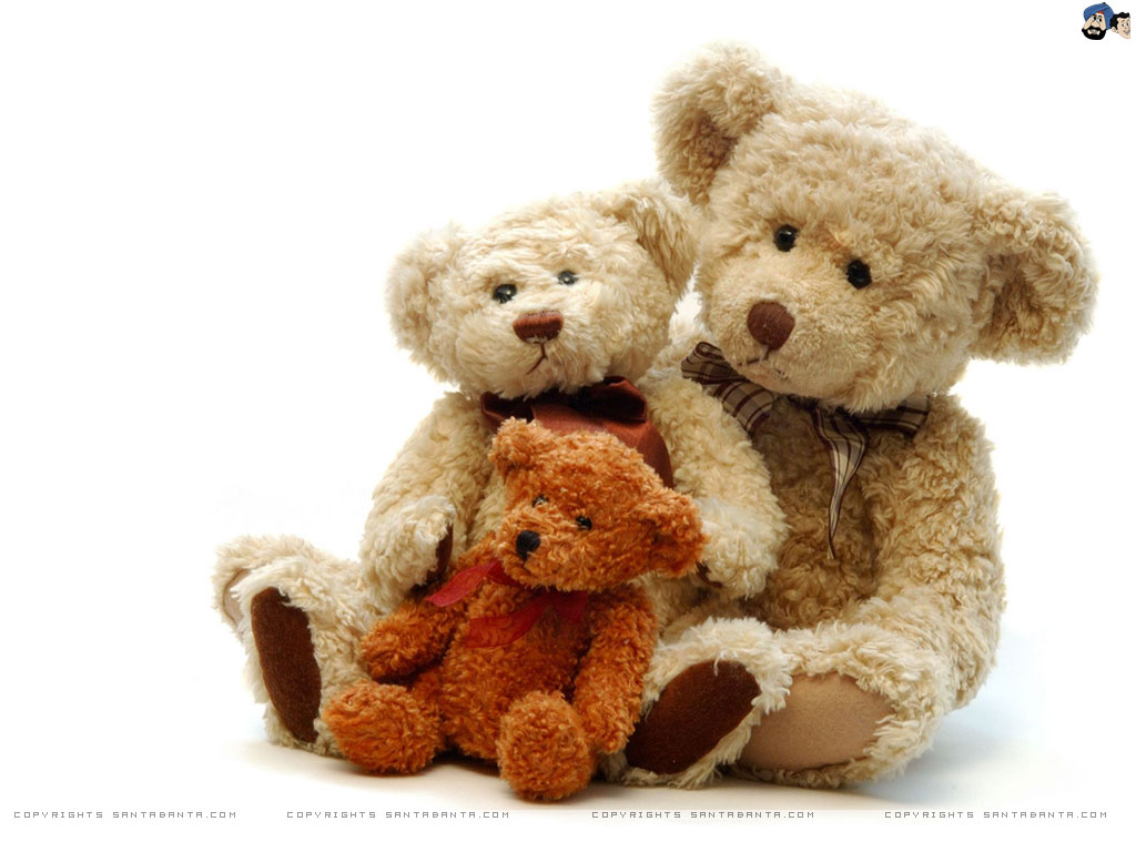 Teddy Bear Day 1024x768 Wallp