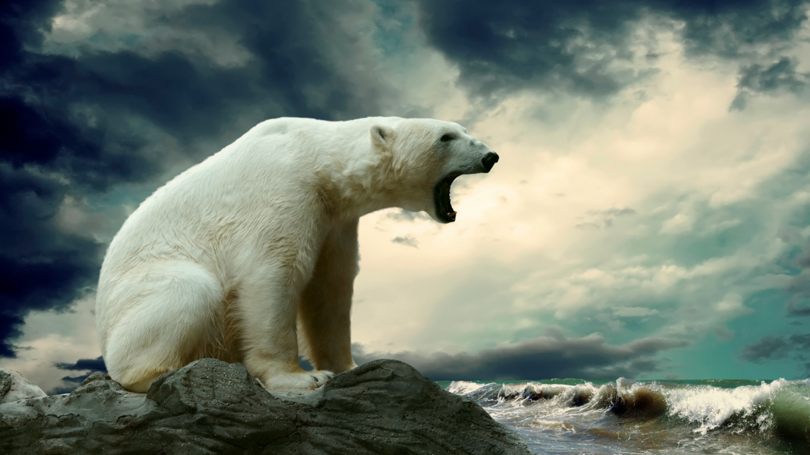 Spartan Polar Bear - Bear HD PNG