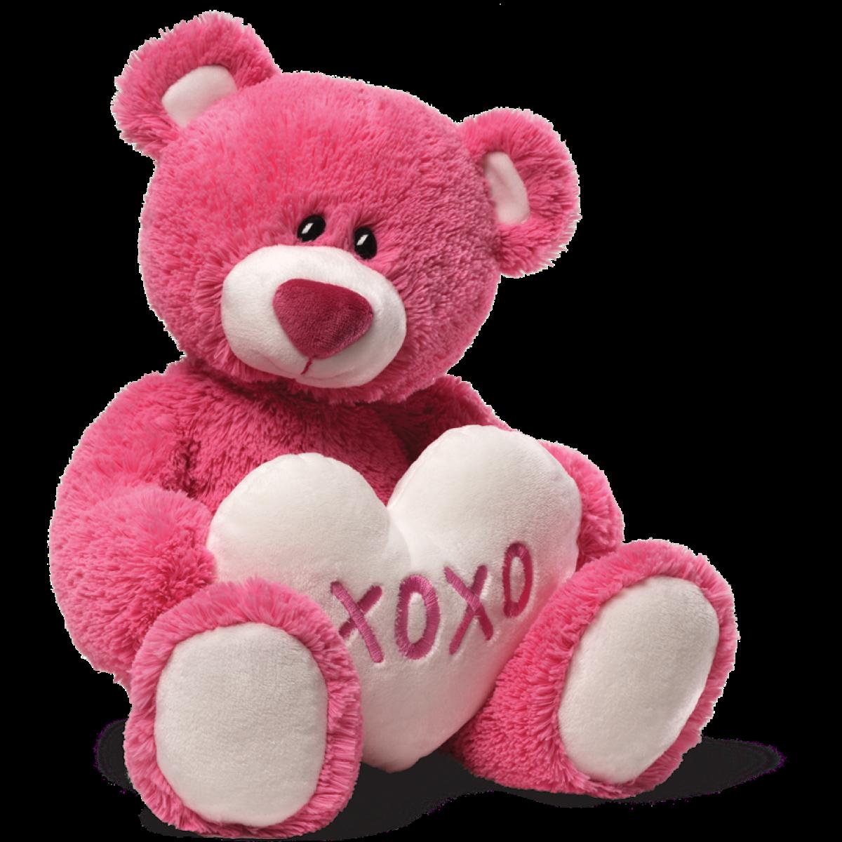Teddy Bear Png Hd PNG Image - Bear HD PNG