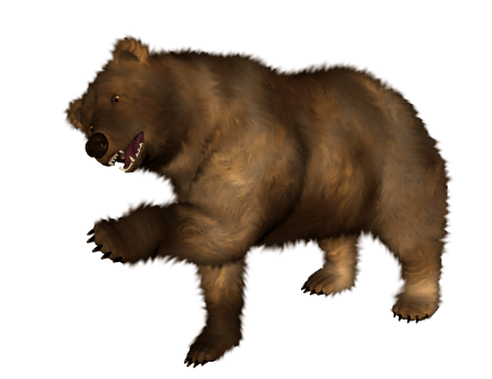Brown Bear PNG Transparent im