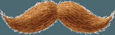 Beard PNG - 24205