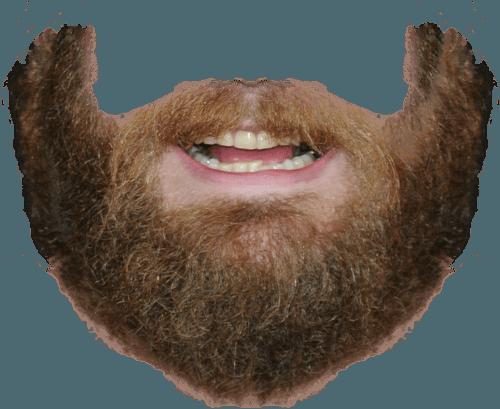 Beard PNG - 24192