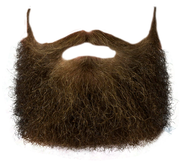 Beard PNG Transparent Image - Beard PNG