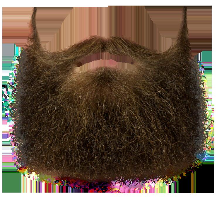Beard PNG - 24194