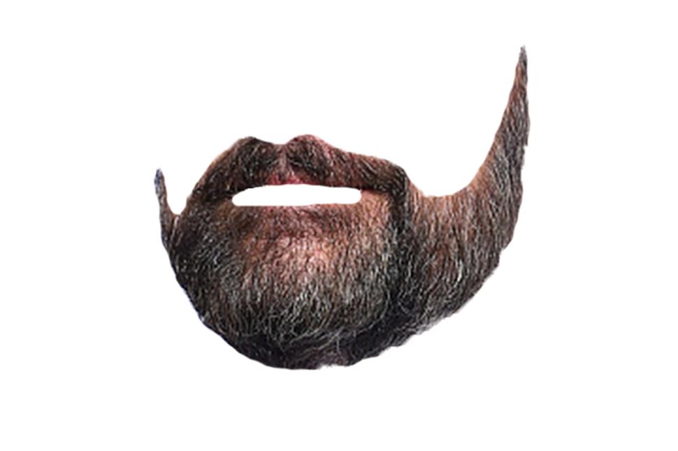 steve-carrell-beard.png - Beard PNG
