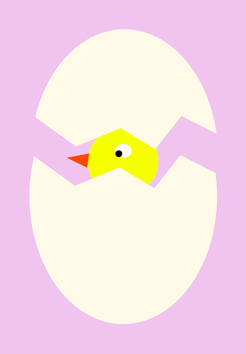 Oeuf, Bébé Oiseau, Au Printemps, Poussin, Pâques - Bebe Oiseau PNG