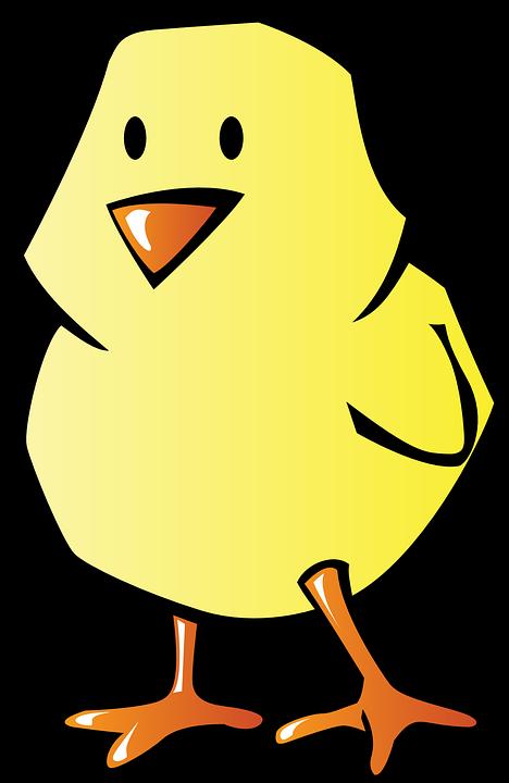 Poulet, Bébé, Petits, Oiseau, Couleurs, Poussin, Isolé - Bebe Oiseau PNG