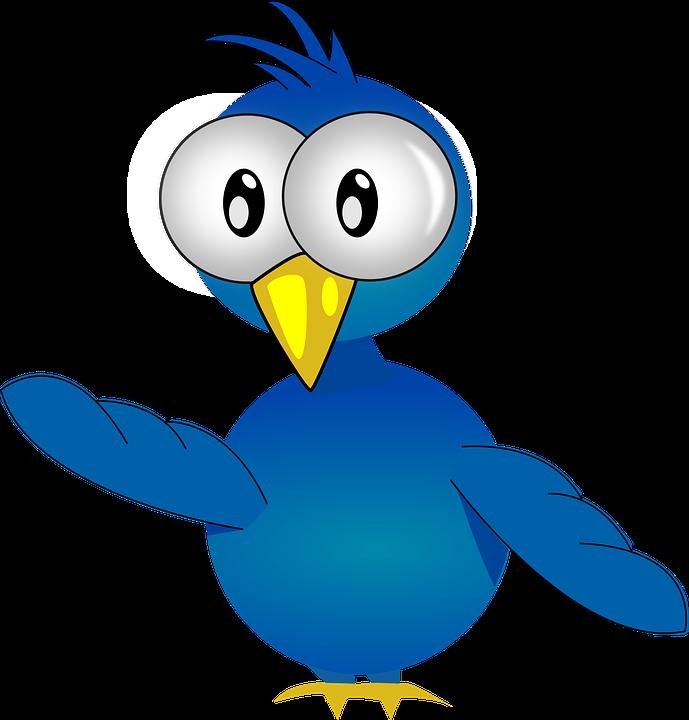 Poussin, Bébé, Oiseau, Jeune, Bleu, Petits, Peu, Debout - Bebe Oiseau PNG
