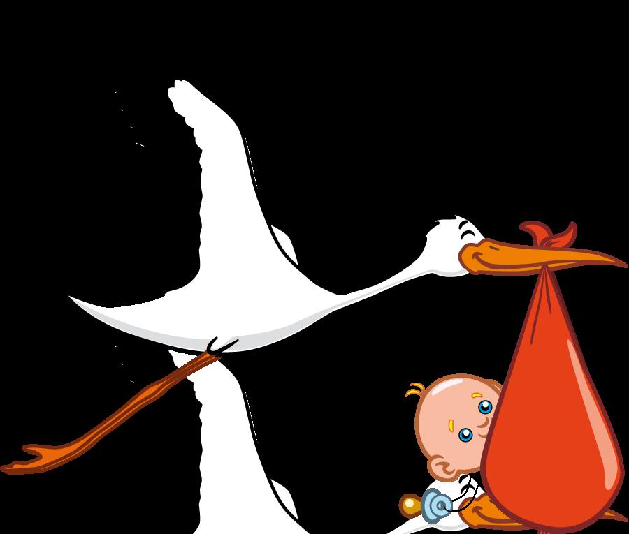 Render Personnages - Renders oiseau bebe cigogne - Bebe Oiseau PNG