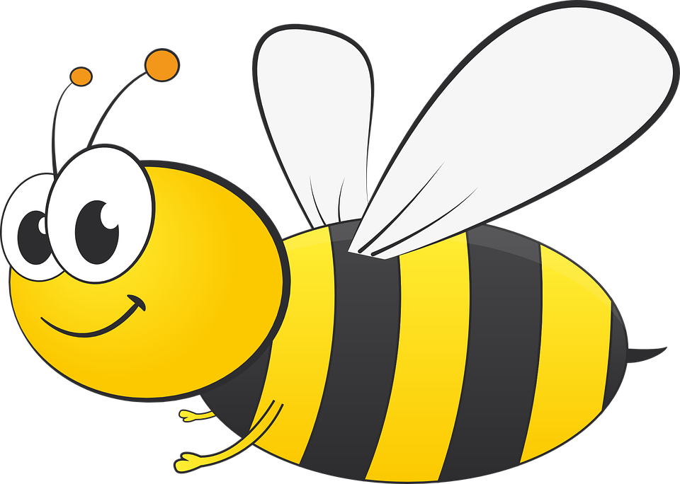 Bee, Graphic, Spring, Honey - Free PNG Honey Bee - Bee Free PNG