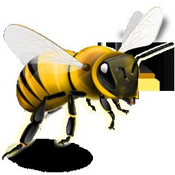 Bee PNG - 9125