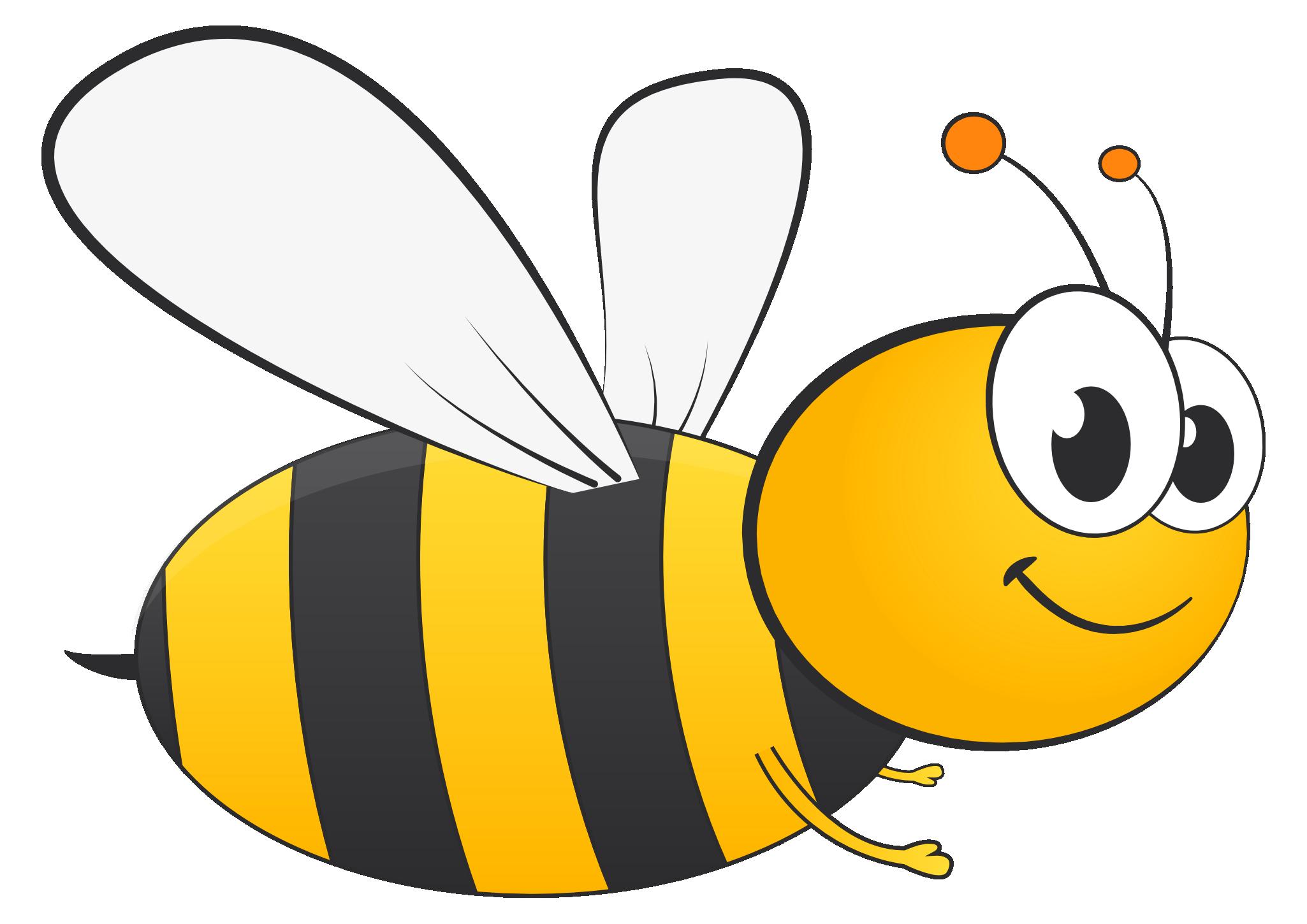 Bee PNG - 9117