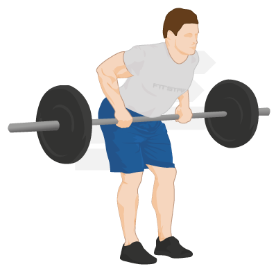 Bent Barbell PNG - 155623
