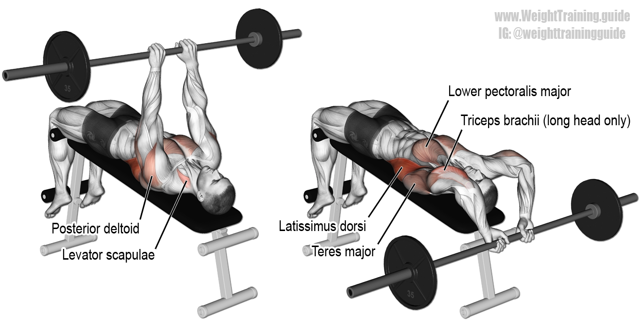 Bent Barbell PNG - 155610