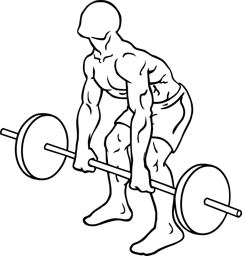 Bent Barbell PNG - 155625