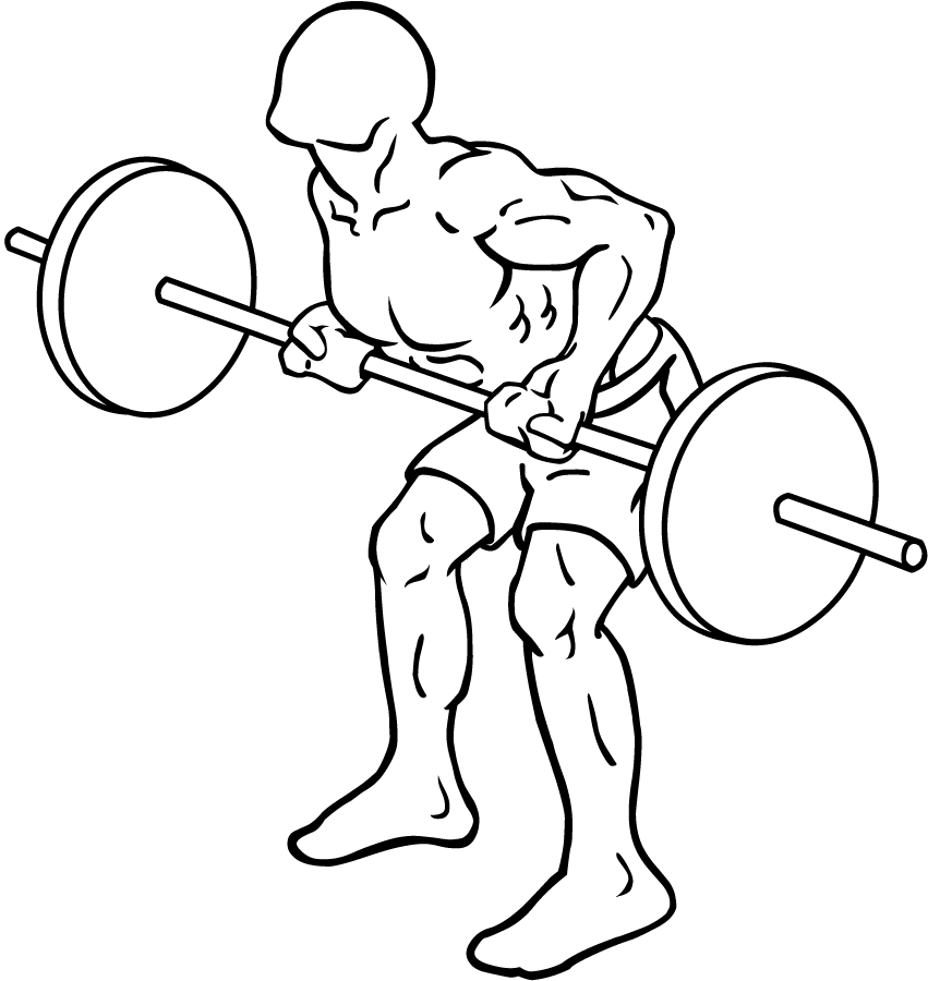 Bent Barbell PNG - 155624