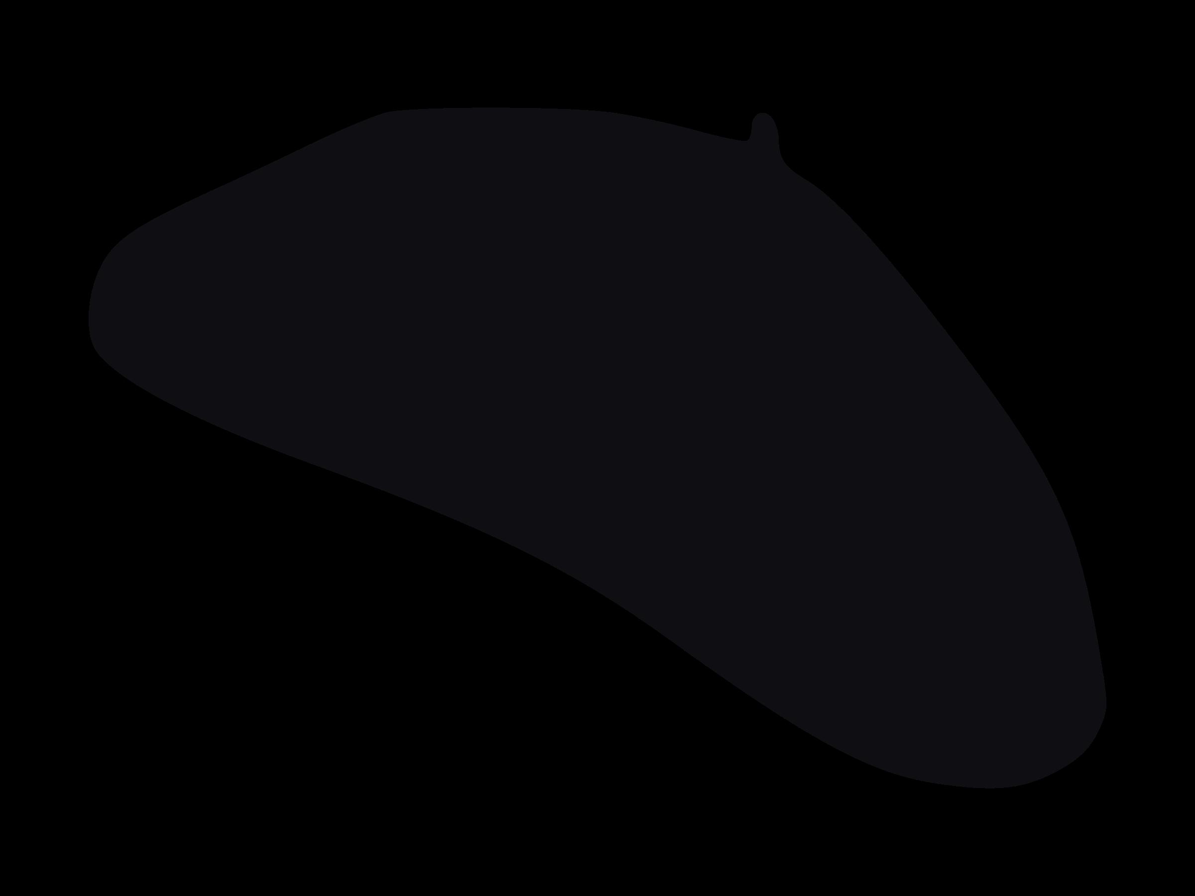 Beret PNG - 135802