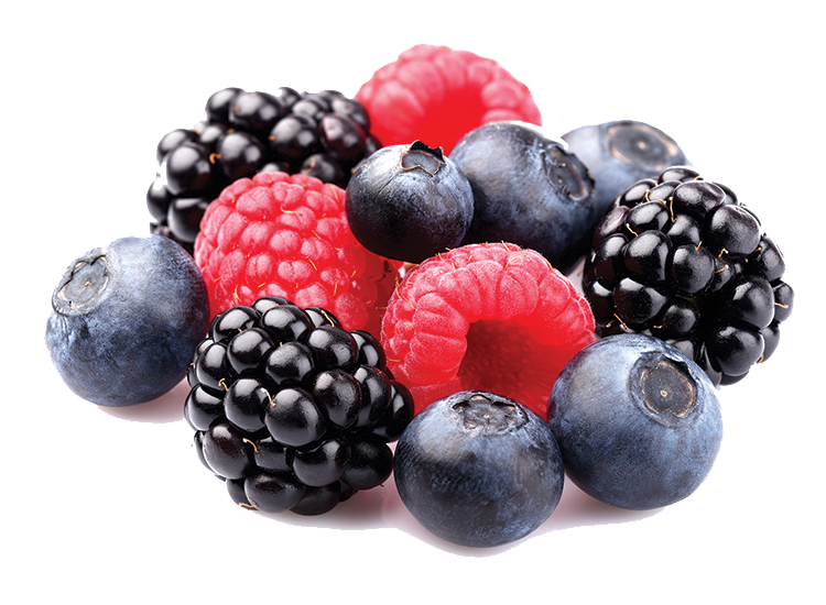 Berries PNG File