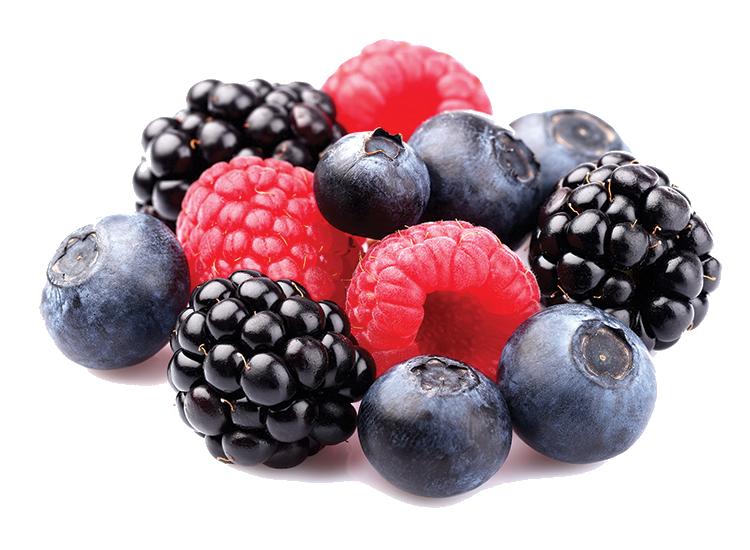 Fresh, Berries, Blackberry, B