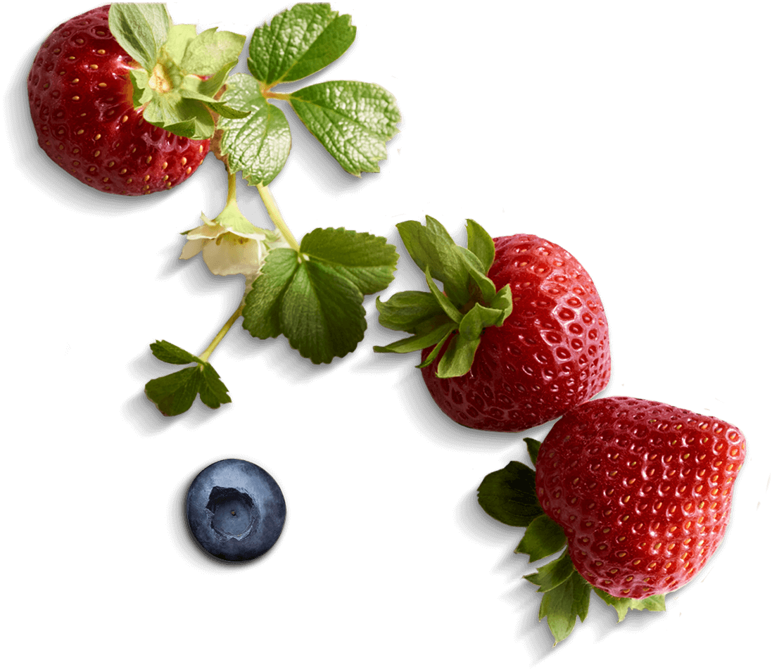 Thatu0027s why all our berries are made for sharing. - Berries PNG