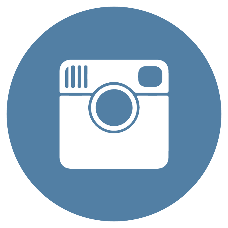 Instagram flat icon circle vector - Bicester Computers Vector PNG