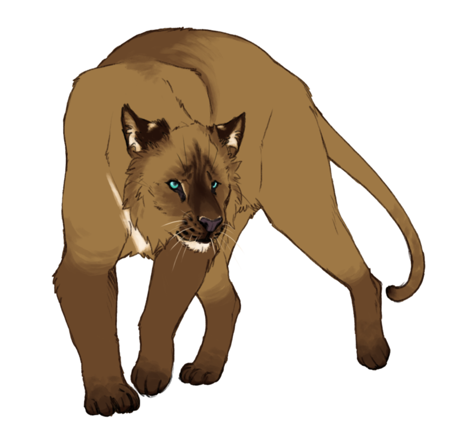domestic big cat adopt - OPEN by Annasko PlusPng.com  - Big Cat PNG