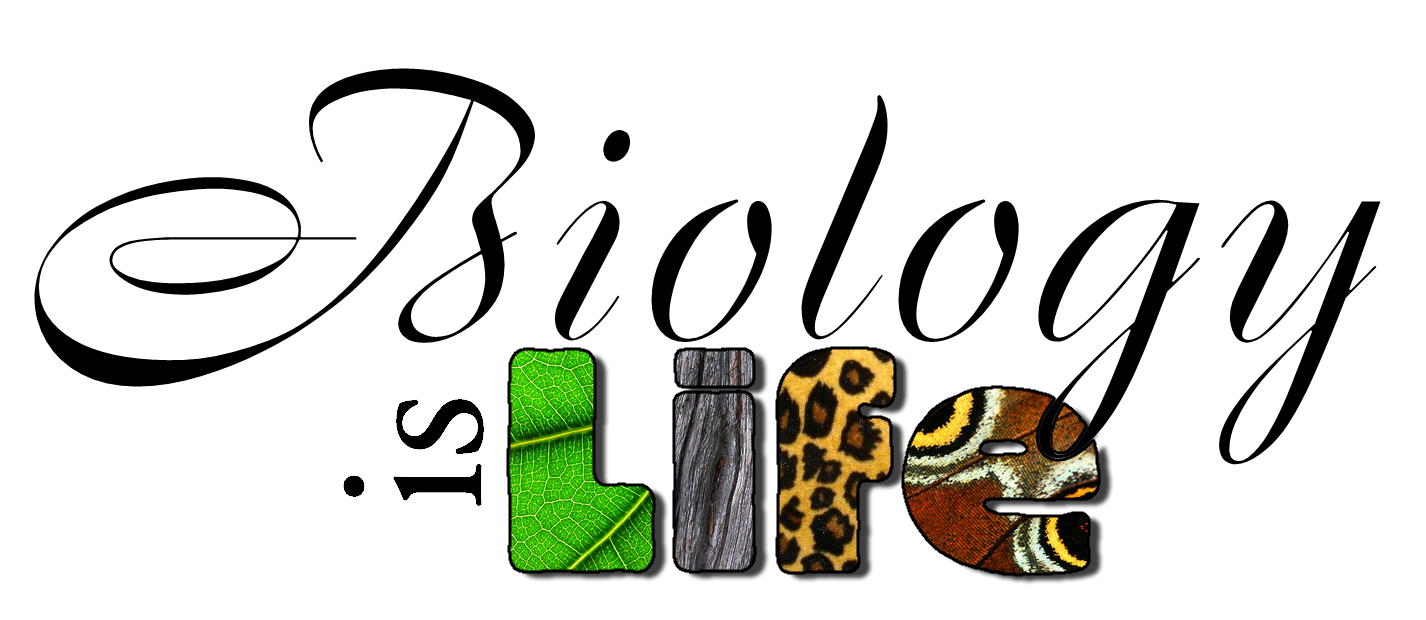 Biology Cover Page PNG - 62662