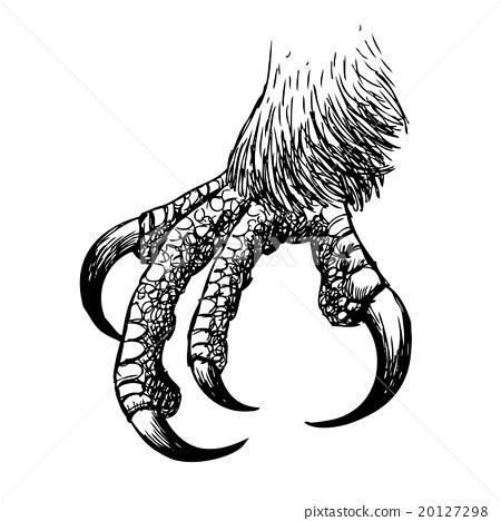 eagle claw, hawk bird doodle hand drawn - Bird Claw PNG