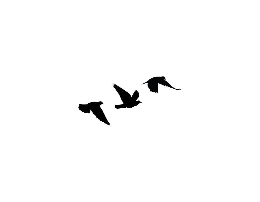 Birds Tattoo - ClipArt Best - Bird Foot PNG