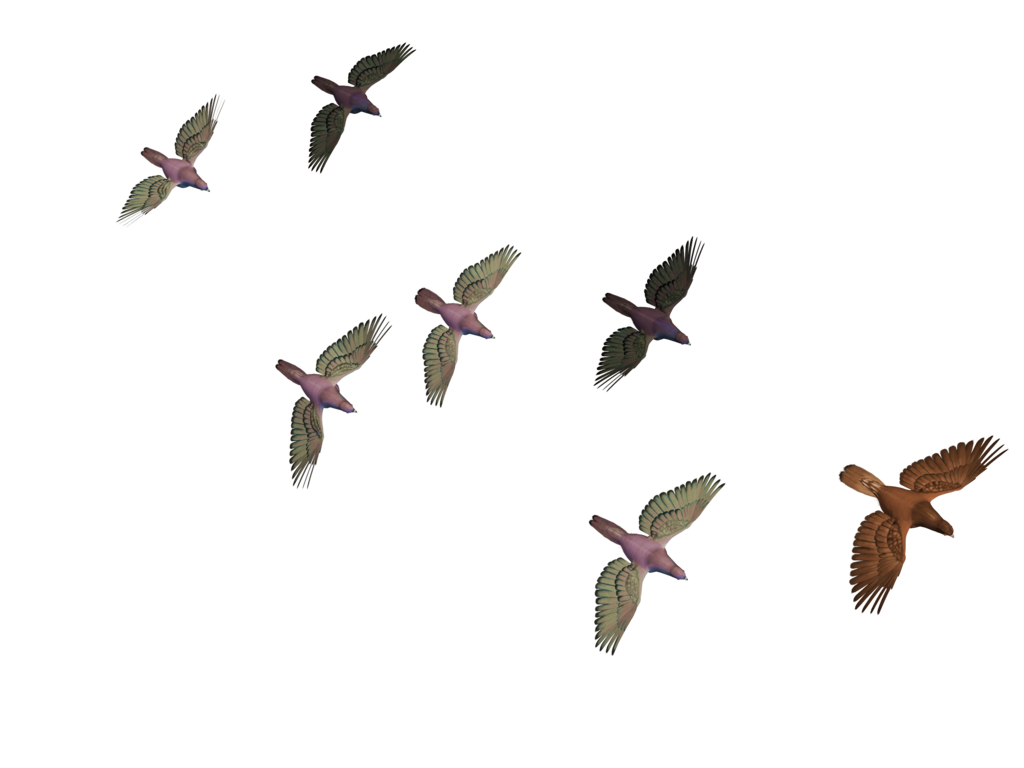Flying Birds 03 PNG Stock by