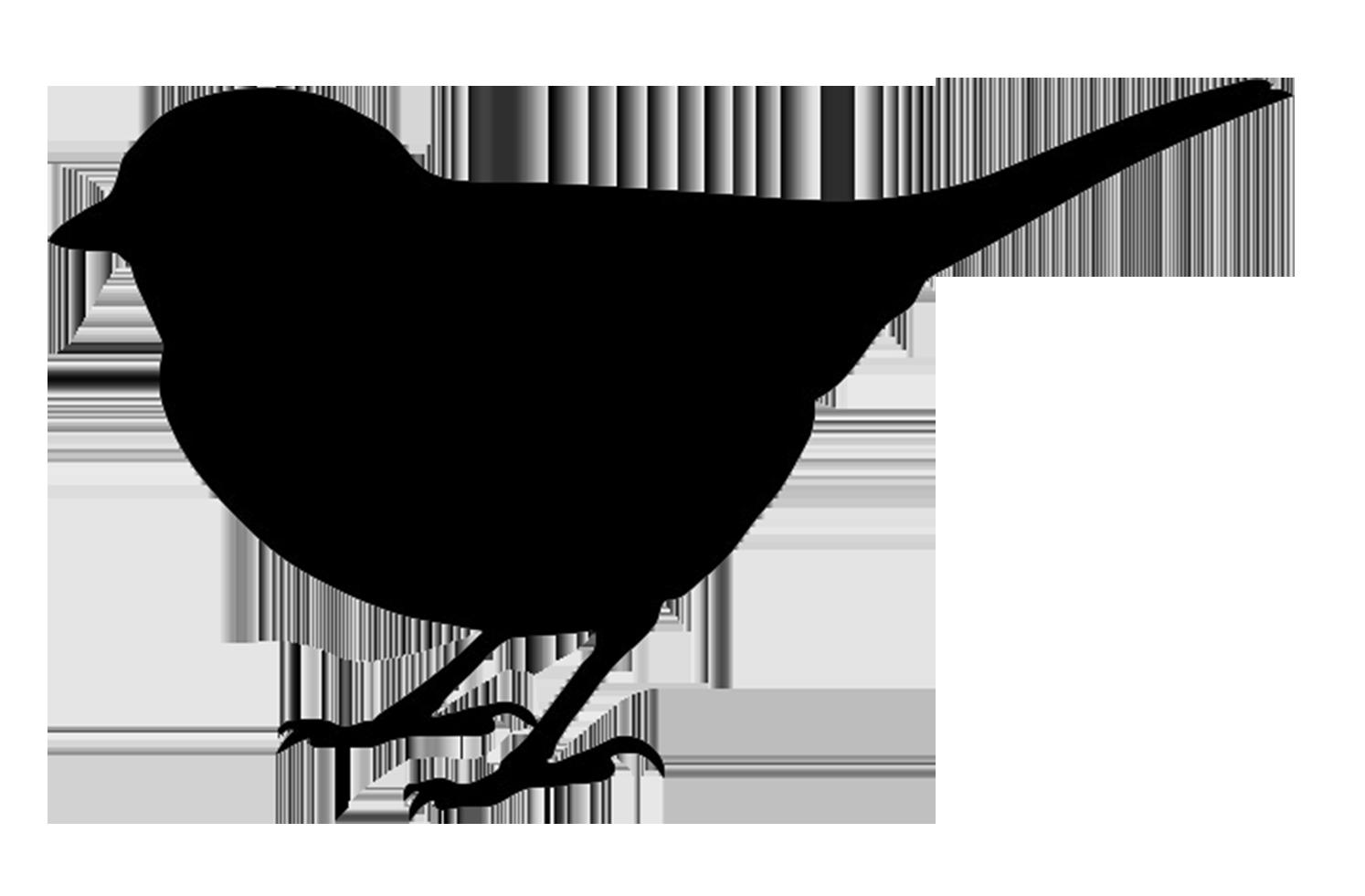 Bird Outline PNG HD - 127203