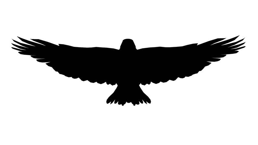 Bird Outline PNG HD - 127215