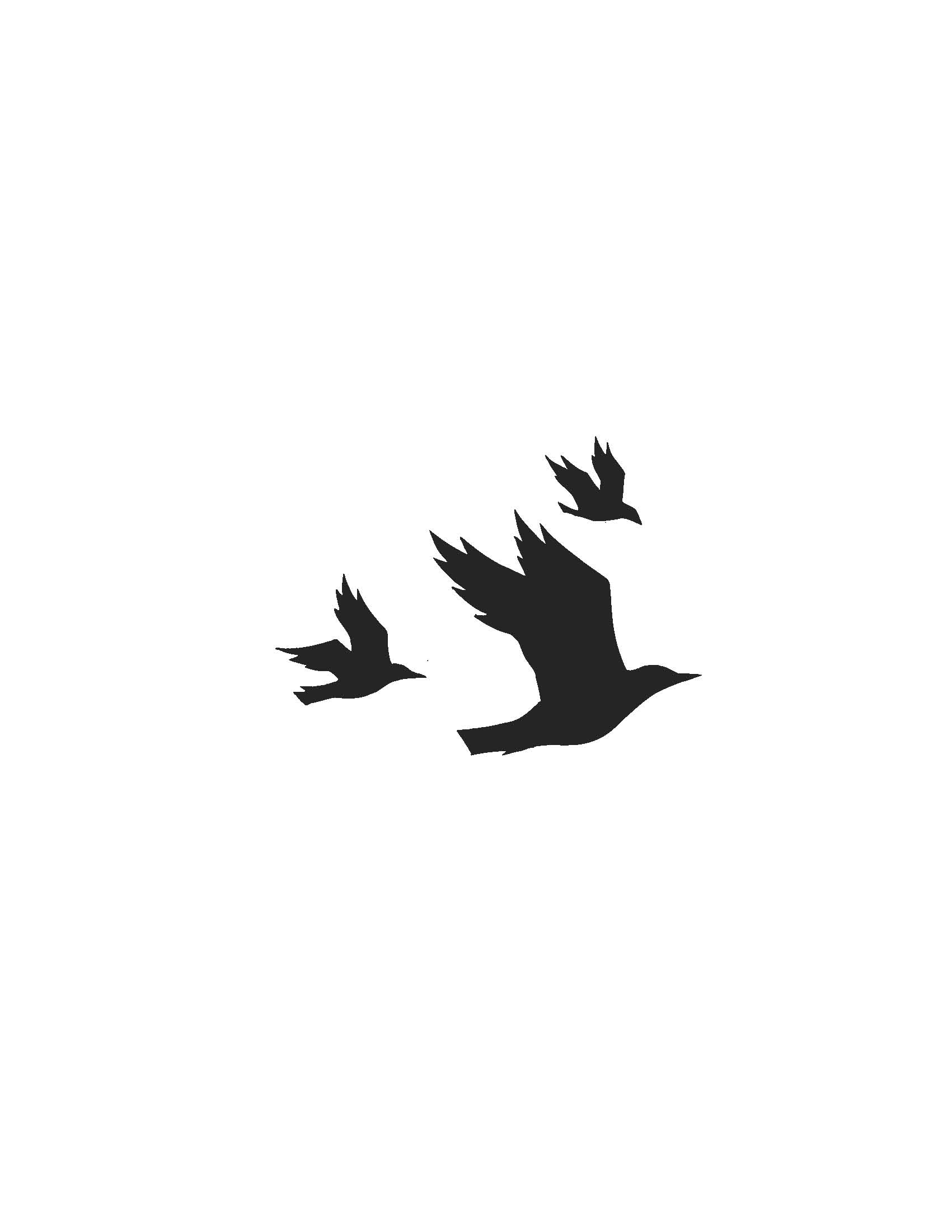 Bird Outline PNG HD - 127212