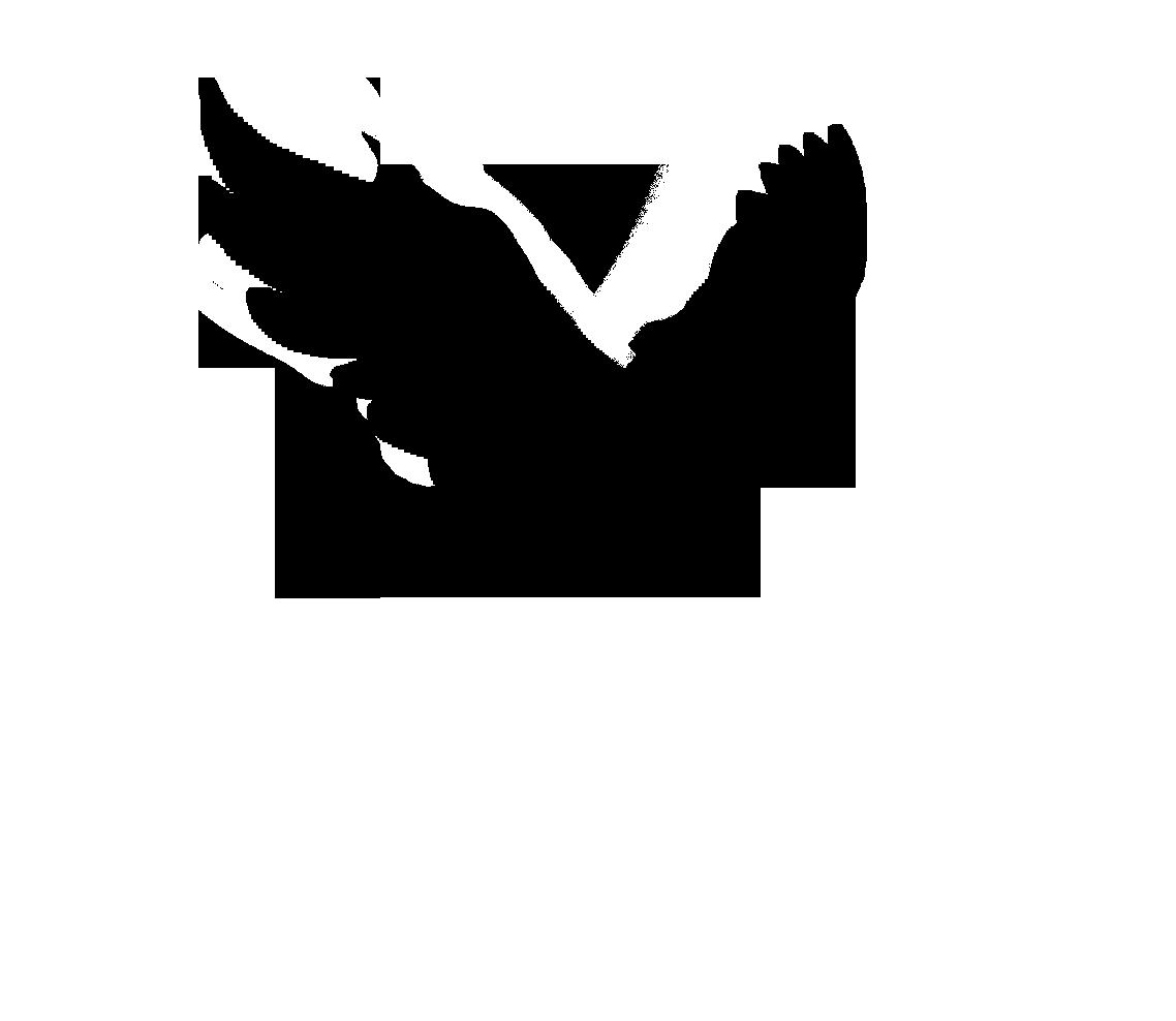 Bird Outline PNG HD - 127214