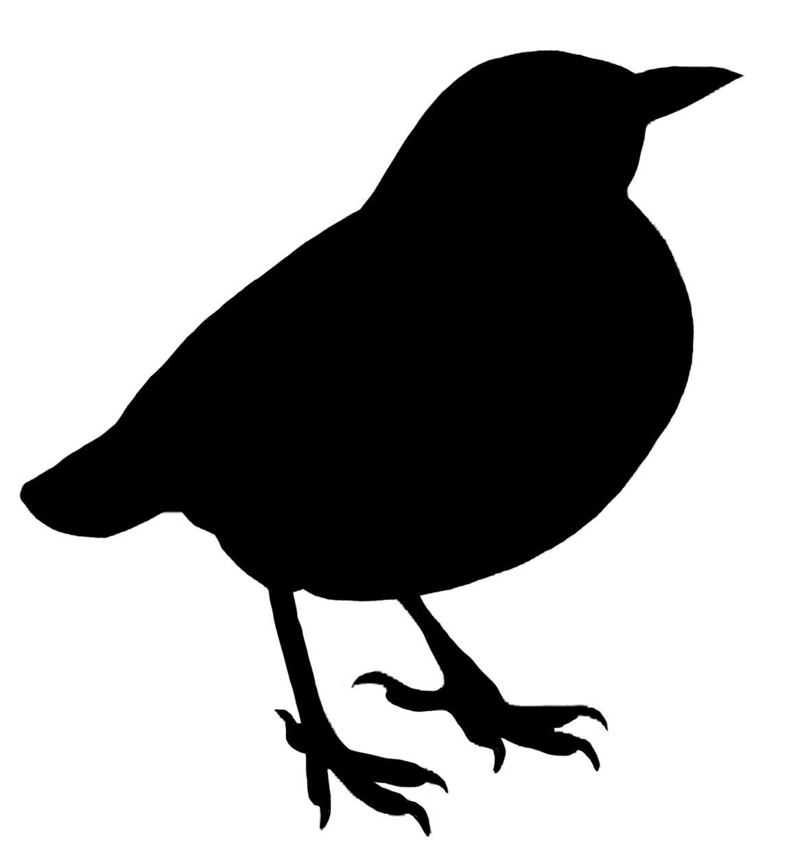 silhouette black of small standing bird PlusPng.com  - Bird Outline PNG HD