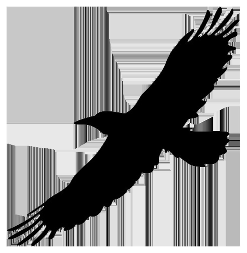 Bird Outline PNG HD - 127206