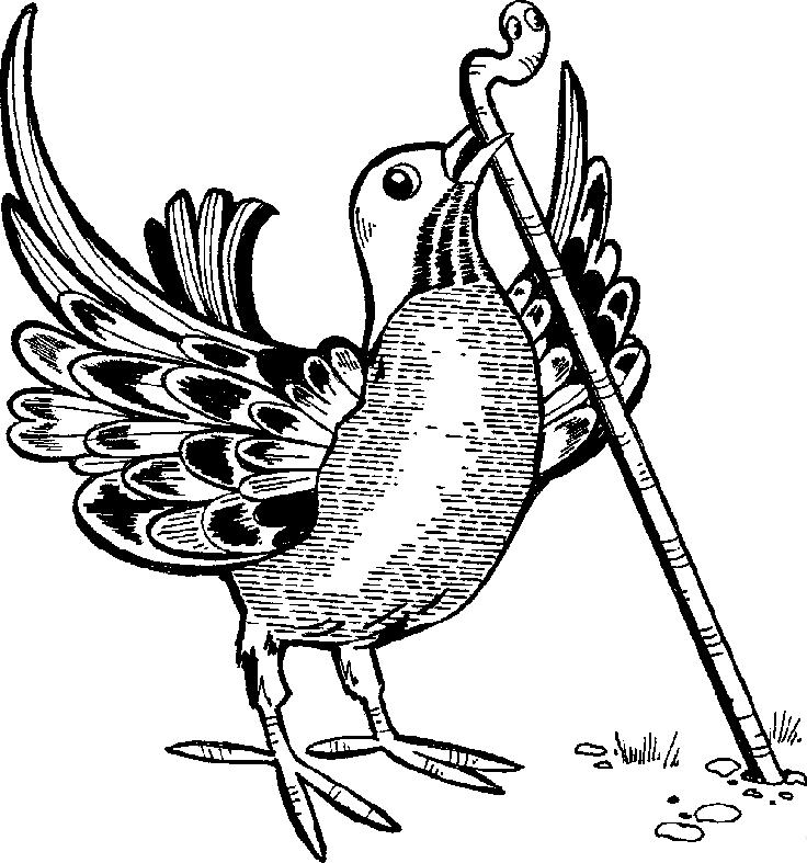 Bird Worm - Bird With Worm PNG